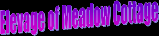 "Logo ""of Meadow Cottage\"""